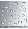 Realistic transparent drops pure clear water vector image vector image