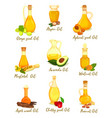 set natural oil for cooking and body care food vector image vector image