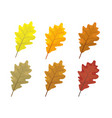 set of colorful autumn leaves cartoon and flat vector image