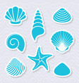 simple sea shells and starfish vector image vector image