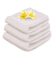 towel isolated on white vector image