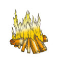 traditional burning firewood color vector image vector image