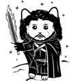 cat warrior with fire sword vector image vector image