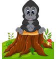 cute baby gorilla sitting on tree stump vector image