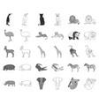 different animals monochromeoutline icons in set vector image