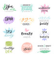 spa lettering beauty calligraphic logotype vector image vector image