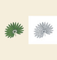 fan palm plant tropical or exotic leaves and leaf vector image vector image