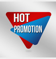 hot promotion sign or label for business promotion vector image vector image