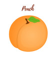 peach with leaffruit in cartoon flat style vector image vector image