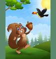 squirrel and bird toucan cartoon in the jungle vector image
