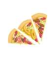 Three Different Pizza Slices Set vector image