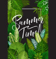 tropical summer holiday banner of exotic palm leaf vector image