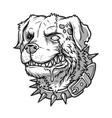 evil mad dog vector image