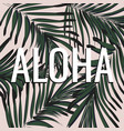 aloha hawaii word on green palm leaves tropical vector image