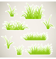 Grass paper vector | Price: 1 Credit (USD $1)