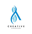 letter a with dna suitable for medical vector image vector image
