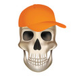 pirate skull with baseball cap vector image