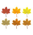 set of colorful autumn leaves cartoon and flat vector image vector image