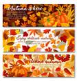 Autumn pumpkin with fallen leaf banner set design