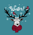 cartoon deer in scarf with bullfinches on his horn vector image vector image