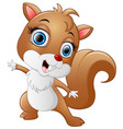 cartoon funny squirrel isolated on white backgroun vector image