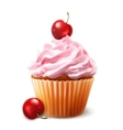 Cherry cupcake vector image vector image