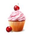 Cherry cupcake vector image