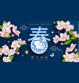 chinese new year zodiac pig and spring festival vector image