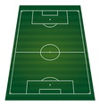 football field perspactive isolated vector image