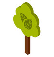 green tree minimalistic design with a lush crown vector image vector image