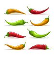 hand drawn red yellow and green chili pepper set vector image vector image