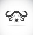 image of an buffalo head vector image vector image
