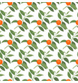 seamless pattern with mandarin branches vector image vector image