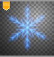 shine blue snowflake with glitter isolated on vector image vector image