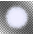 White fluffy isolated sphere A piece of vector image vector image