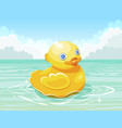 yellow duck floating on water surface vector image vector image