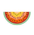 half slice of watermelon flat icon vector image