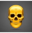 Polygonal gold skull vector image
