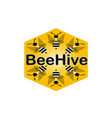 beehive bees fly in a hexagon for logo vector image