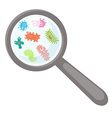 Cartoon microbes peek out from a magnifying lens vector image