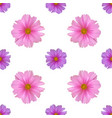 seamless pattern with cosmos flower vector image vector image