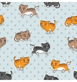 seamless pattern with funny cats vector image vector image