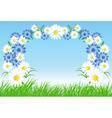 cornflowers and daisy vector image