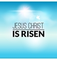 Easter christian celebration Jesus Christ is risen vector image