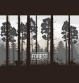 forest landscape minimalistic pines vector image