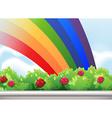 A rainbow in the sky vector image