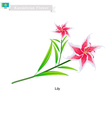 Beauitful Lily The Popular Flower of Kazakhstan vector image vector image