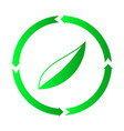ecology leaf design icon vector image vector image