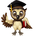 funny brown white owl cartoon vector image vector image