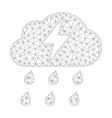 mesh thunderstorm icon vector image